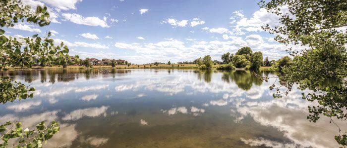 Brennan by the Lake