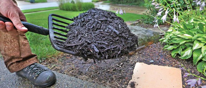 Ask Angie's List: How do you make your own mulch?