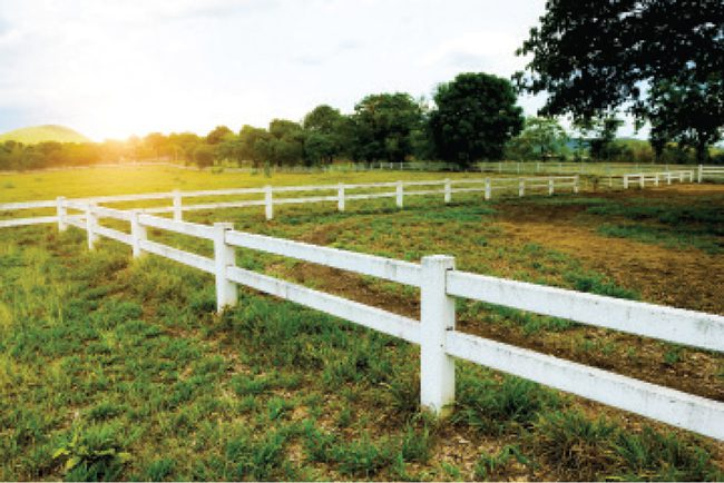 The most important attributes of a rural property