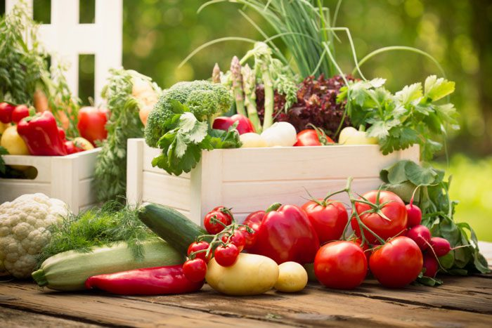 Sow Vegetables for Fall